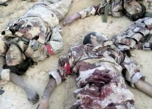 """شهود عيان: جثث قتلى """"بيت المقدس"""" تحولت إلى أشلاء في الشيخ زويد"""