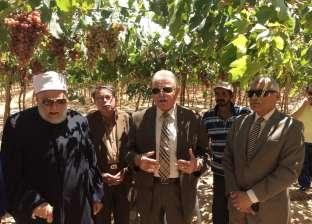 """جمعة وفودة يتفقدان مزرعة """"المغربي"""" في جنوب سيناء"""